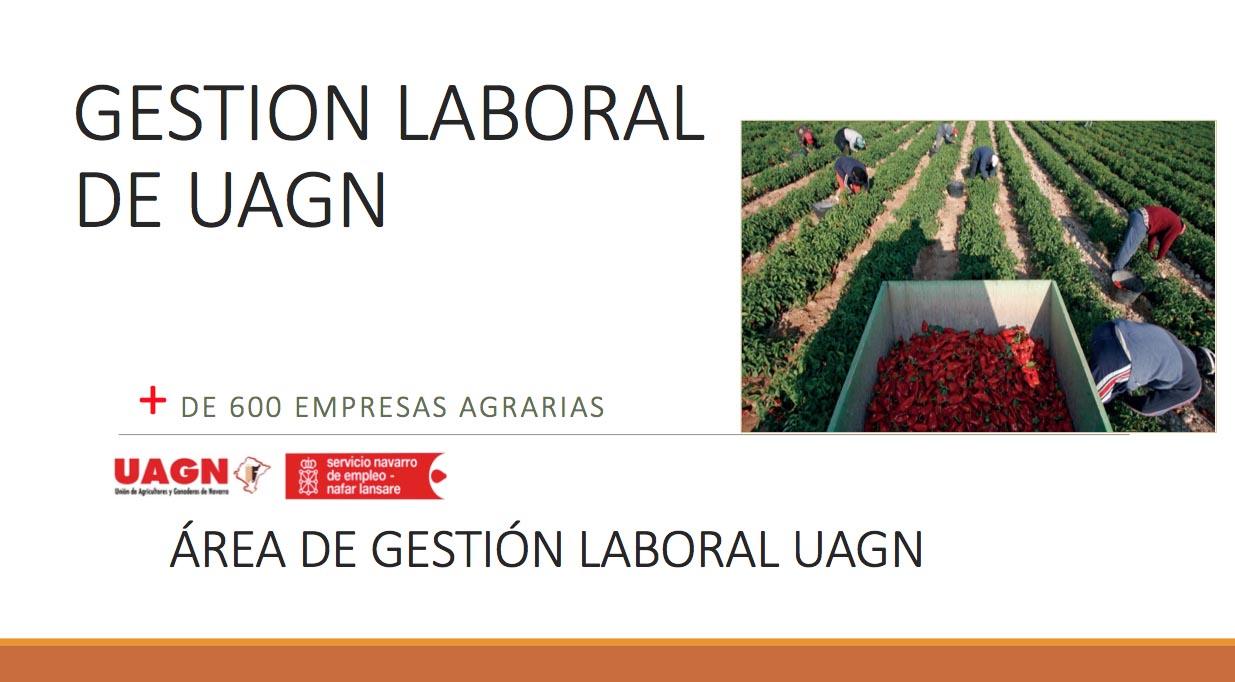 Gestión Laboral de UAGN