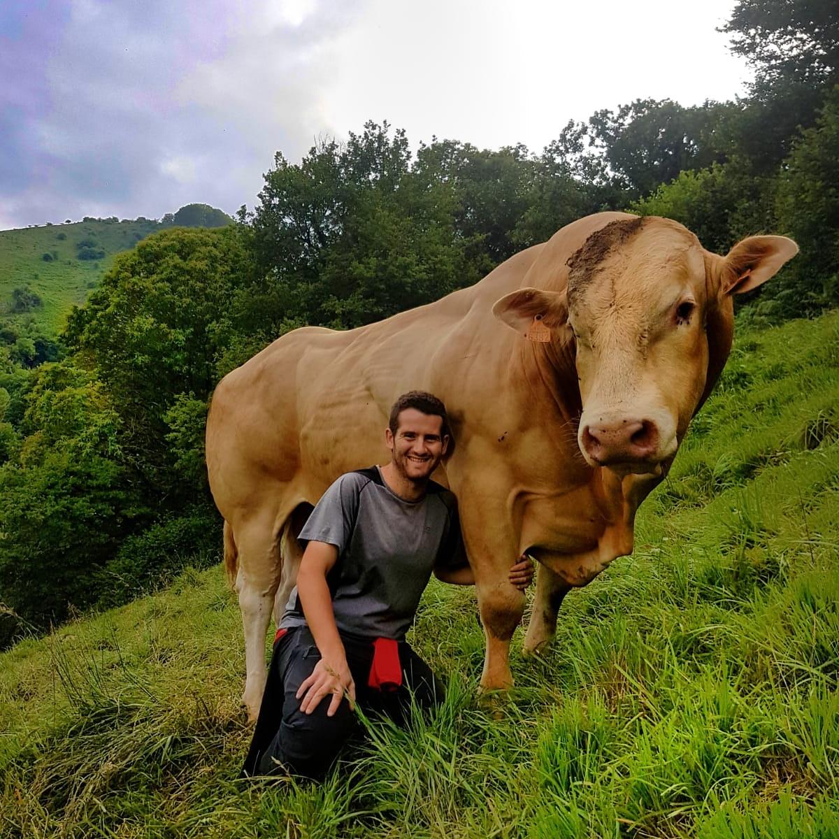 Pello Sarratea Sanzberro, joven ganadero de porcino, equino y vacuno de carne