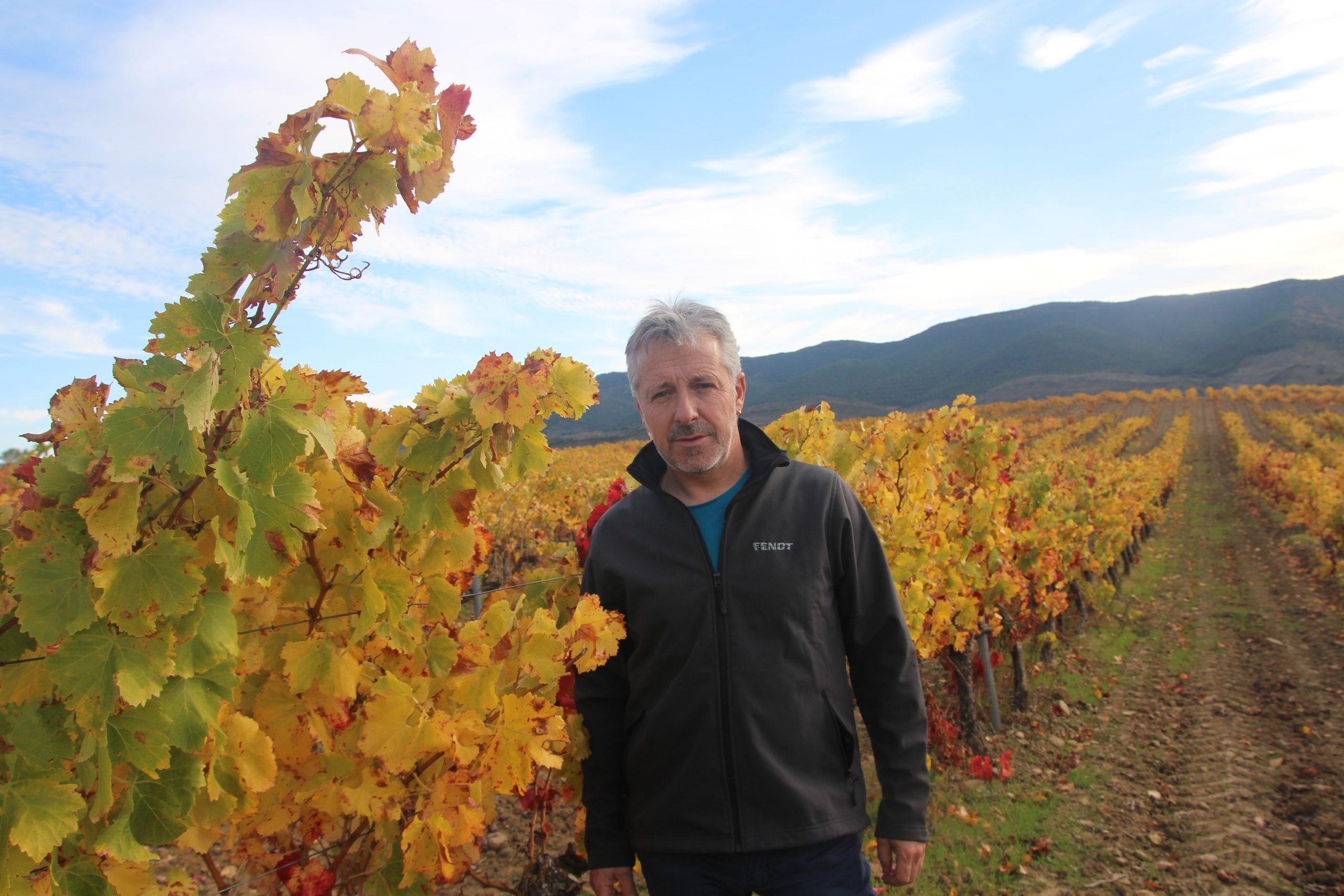 Aprobado del Plan de reestructuración y reconversión del viñedo de 45 viticultores presentado por UAGN, para la campaña 2020-2021