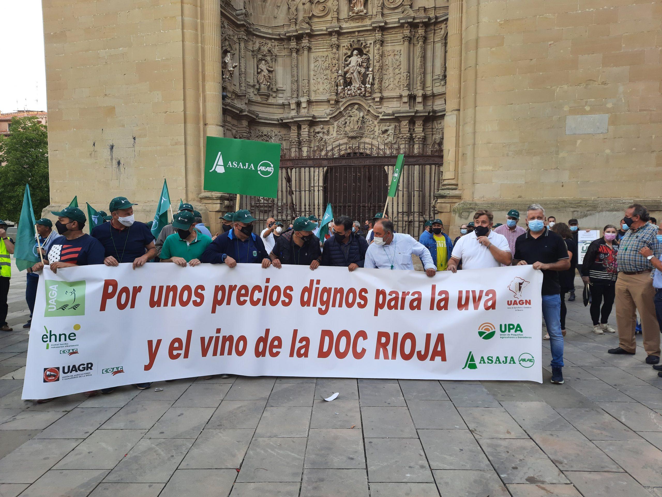 """Viticultores se manifiestan para reclamar """"Unos precios dignos para la uva y el vino"""""""